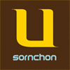 SORNCHON WE ARE A DESIGN BUILD COMPANY